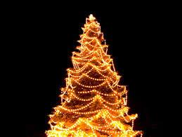 christmas christmas tree lights outside for replacement bulbs