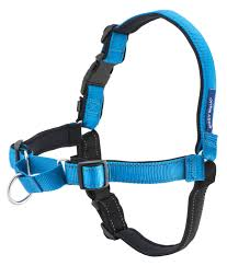 Comfortable Strap On Harness Petsafe Deluxe With Neoprine Padding No Pull Training Easy Walk