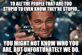 You Re Stupid Meme - leonardo dicaprio cheers meme imgflip