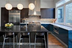 Kitchen Cabinet Interiors Interior Century Modern Kitchen Cabinet Chicago With Omega Wooden