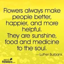 The Language Of Flowers Speak The Language Of Flowers Romance U2013 Relationship Matters