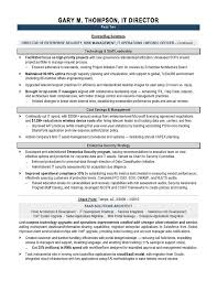 Sample Resume Photo by It Director Sample Resume It Resume Writer Technical Resume