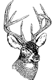 deer hunting clipart free clipart image 3 clip art library