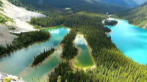 beautiful places to see lake o u0027hara yoho national park british