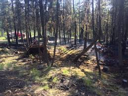 Wildfire Quesnel by B C Failed To Reduce Wildfire Risk Despite Warning Communities