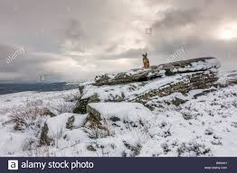 leeds west uk 18th november 2016 uk weather more snow