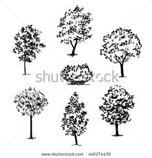 trees sketch set hand drawing stock vector 445931131 shutterstock