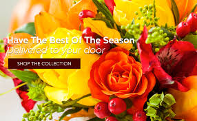 west columbia florist flower delivery by pineview florist