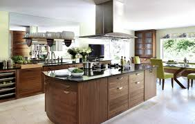 Eco Kitchen Cabinets Hovering Eco Friendly Kitchen With Sturdy Hardwood Island And