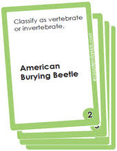 4th grade science flash cards free pdf downloads