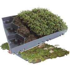 ecosedum tray for green roofs 1 square meter pre planted