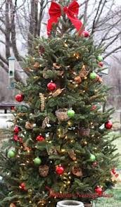 rebecca u0027s bird gardens blog a christmas tree for the birds