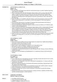 Internal Auditor Resume Avp Internal Audit Resume Samples Velvet Jobs