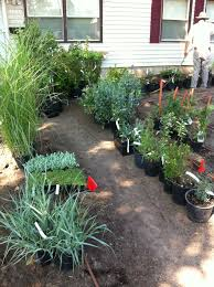 Reno Green Landscaping by Nevada Landscape Archives Full Circle