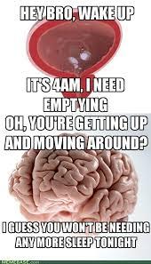 Scumbag Brain Meme - scumbag brain meme stupid stuff pinterest scumbag brain