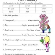 plant vocabulary worksheet have fun teaching