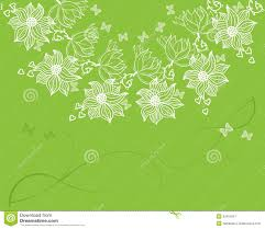 Background Invitation Card Floral Invitation Card With White Flowers Stock Image Image