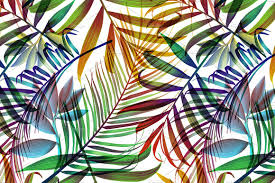 tropical colorful palm jungle leaves patterns creative market