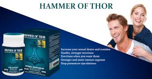 hammer of thor capsule in pakistan 100 herbal hammer of thor in pk
