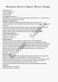 Writer Resume Business Object Resume Best Simple Software Experience And
