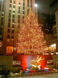 pagan origins of the christmas tree christmas lights decoration