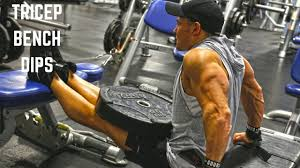 Triceps Bench Dips Weighted Tricep Bench Dips Youtube