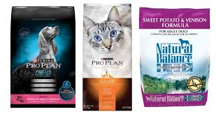 petsmart coupon free bag of dog or cat food southern savers