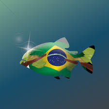 Brazil Flag Image Double Exposure Of Fish With Brazil Flag Vector Image 1598835