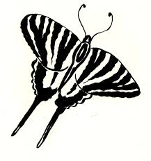 funny zebra coloring pages u2014 allmadecine weddings
