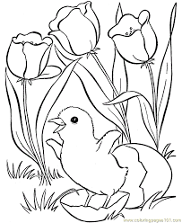 spring animals coloring pages coloring