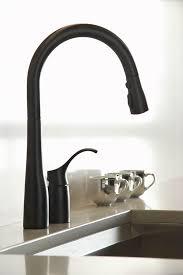 Kohler Simplice Kitchen Faucet Kohler K 647 Simplice Pullout Spray Kitchen Faucet With Detached