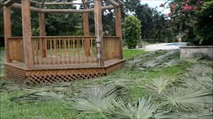 how to spray a tiki hut and palms youtube