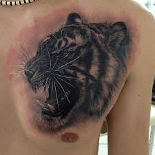 35 tiger tattoos designs ideas for chest