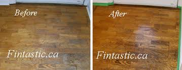 floor care fintastic services and professional carpet