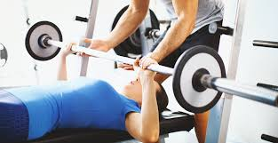 Workouts With A Bench Getting Started With Strength Training