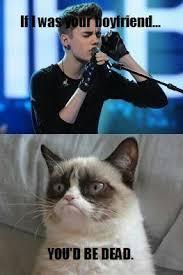 Internet Meme Songs - 49 best funny grumpy cat song lyrics images on pinterest funny