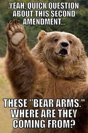Sad Bear Meme - the right to bear arms funny bear meme my animal rocks