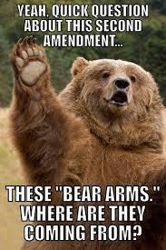 the right to bear arms funny bear meme my animal rocks