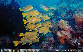 pc themes in hd pc world finds a great win 7 theme pack for ocean lovers marine