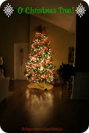 Put Lights On Christmas Tree by Christmas Remarkable How To Put Christmasts On Tree Picture