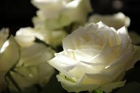 Memorial Service Favors How To Plan An At Home Memorial Service For Your Loved One