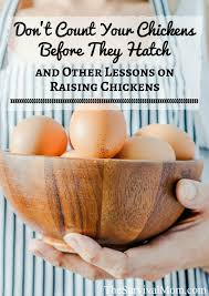 Never Count Your Chicken Before They Hatch Don T Count Your Chickens Before They Hatch And Other Lessons On