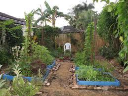 gardening in florida the gardens