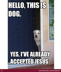 Yes This Is Dog Meme - yes this is dog by mattzorr meme center