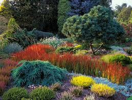 garden design using grasses photogiraffe me