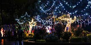 Oregon Garden Christmas Lights Awesome Picture Of Walk Through Christmas Lights Fabulous Homes