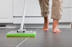 Kitchen Floor Cleaner by The 4 Best Steam Mops For Home Use