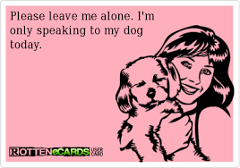 Crazy Dog Lady Meme - i saw a xenophobe in the mirror and i like her keep the tail wagging