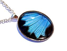 butterfly wing necklace images Real butterfly wing necklace papilio ulysses blue jpg