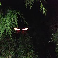 homemade halloween decoration ideas halloween eyes glow sticks